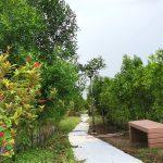 pahara linear park
