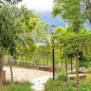 pahara pocket park